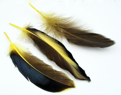 www.beadyourfashion.com - Feather ± 110x22-151x34mm