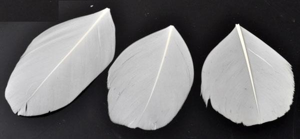 www.beadyourfashion.com - Feather ± 41x24-71x39mm